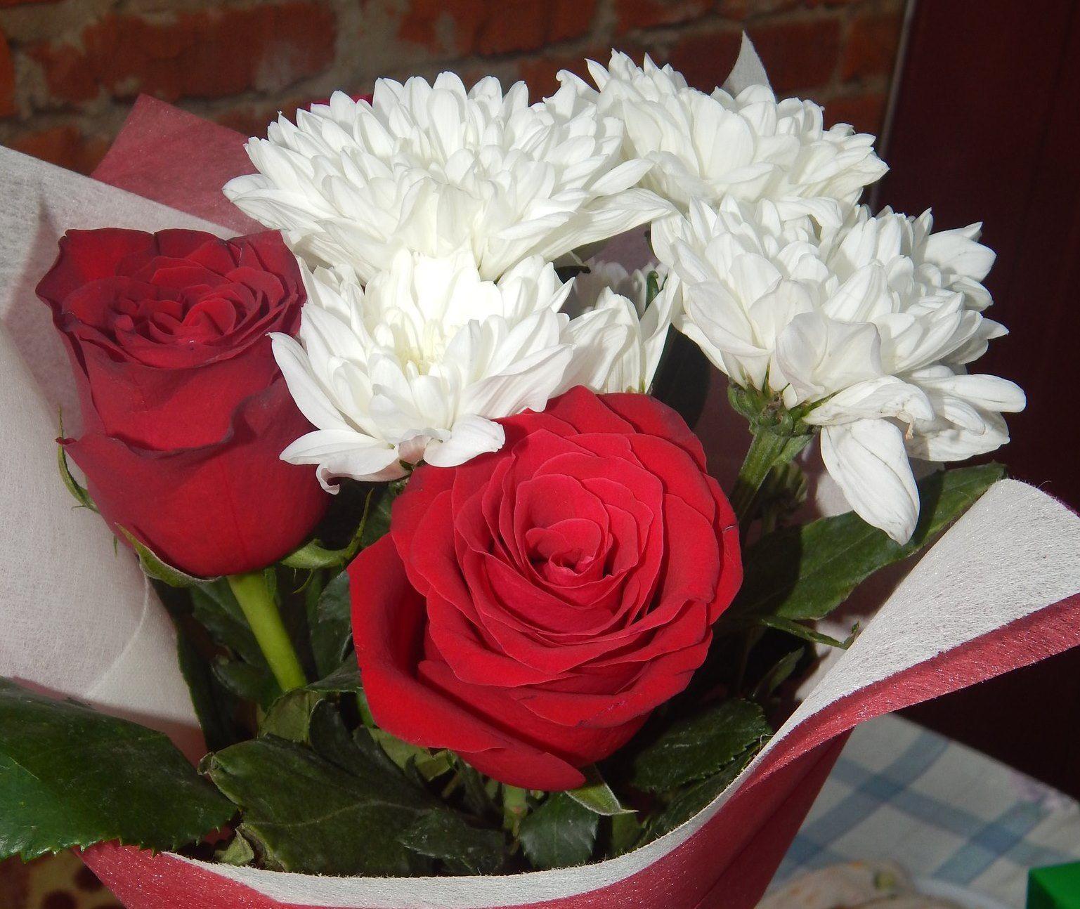 Фото цветов к 8-у марта